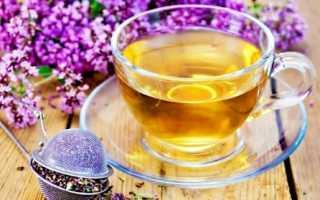 Чай из бадана (чигирский) — лечебные свойства, противопоказания и рецепты