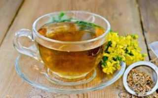 Курильский чай — польза и вред, применение