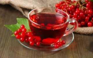 Чай из калины — польза и вред, как приготовить