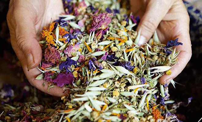 Монастырский желудочный чай состоит из трав, кореньев, высушенных и скомпонованных для лечения, профилактики заболеваний ЖКТ