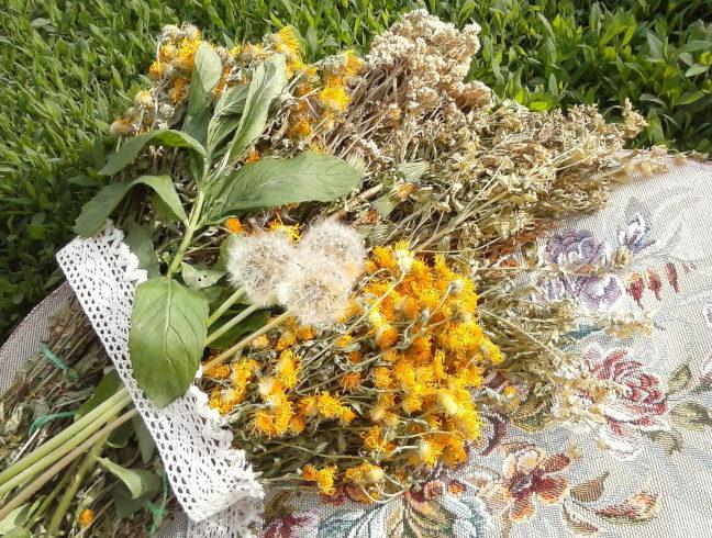 В состав монастырского чая от паразитов входят следующие ингредиенты