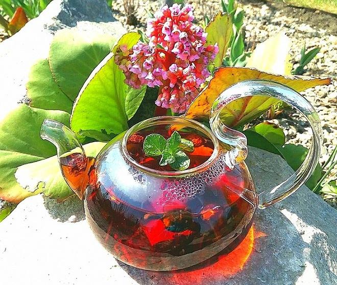 Как заваривать бадан чай