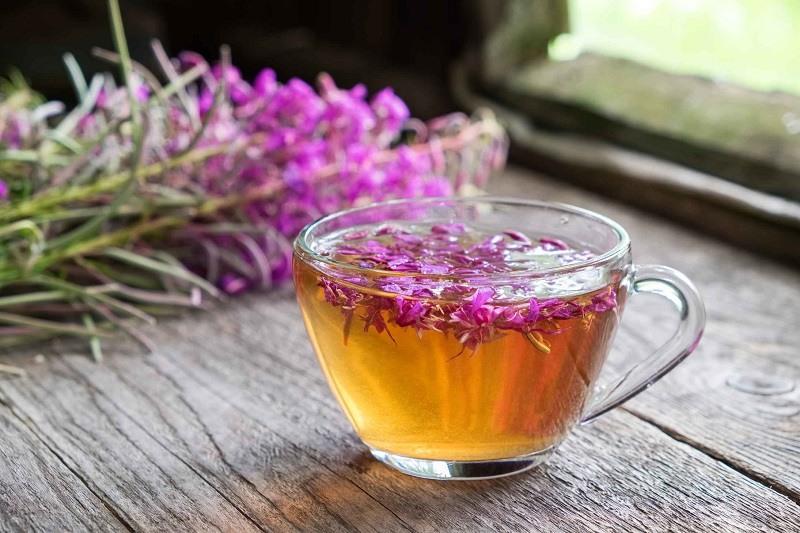 Полезные свойства копорского чая