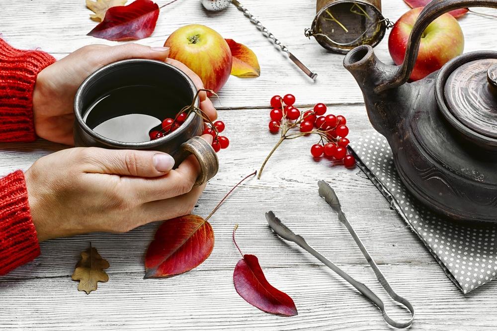 Как приготовить калиновый чай